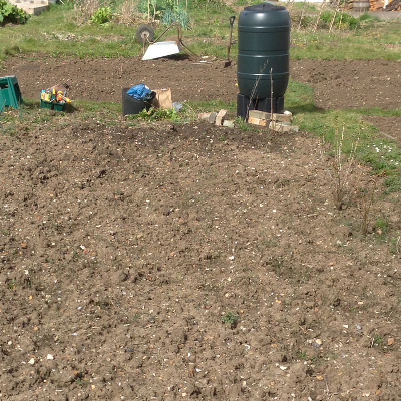 bare allotment