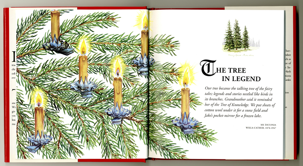 pages from The Christmas Tree book by Barbara Segall
