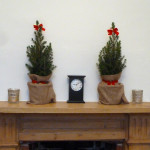two miniature christmas trees