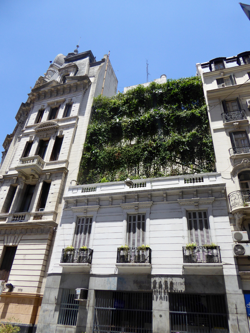 Hanging gardens in Buenos Aires soften and cool the walls.