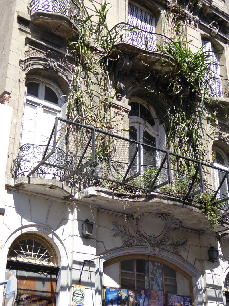 Plants make a take-over bid for the façade.