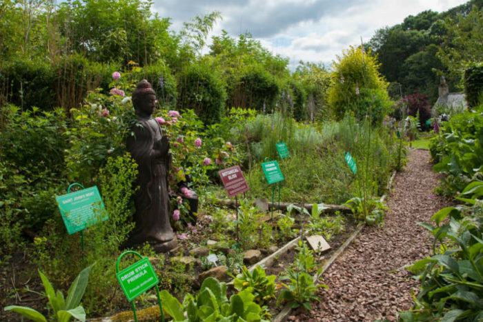 Dilston Physic Garden is a modern physic garden created by Professor Elaine Perry