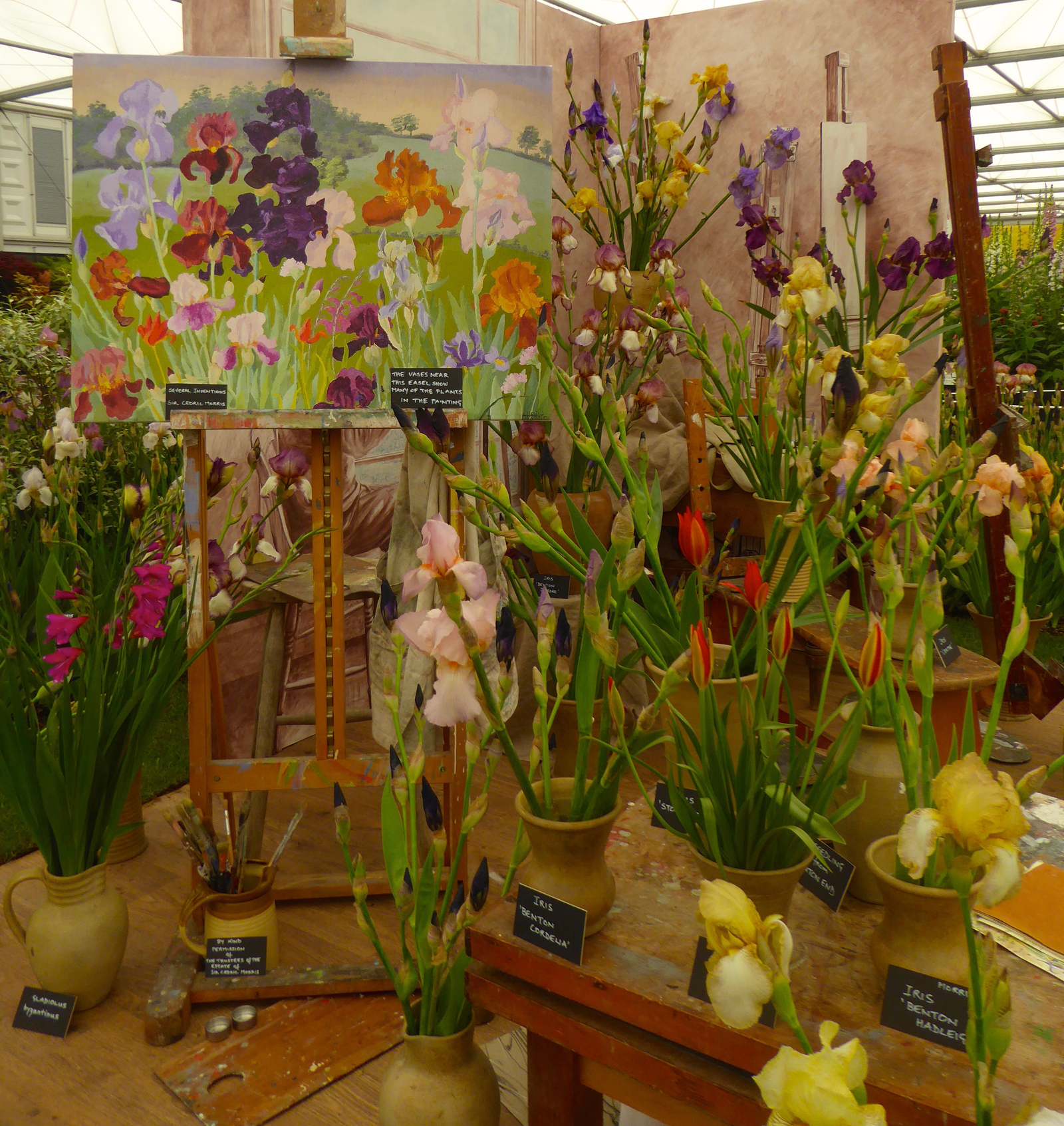 sarah cook display cedric morris RHS