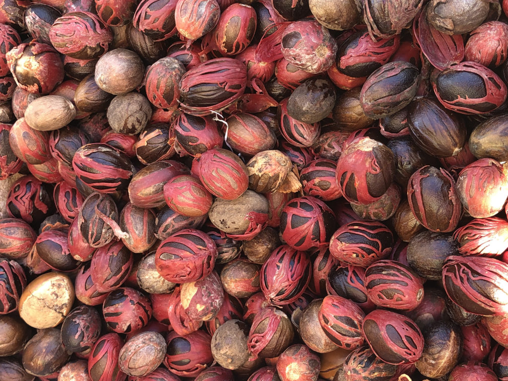 Nutmeg showing red arils (mace)